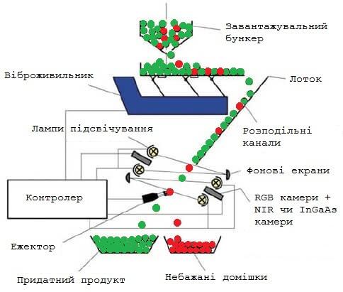 optical sorting process